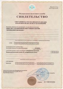Свидетельство-из-ФНС-ПКФ_1